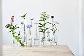 Flower, Vase, Flower Arrangement, Bouquet, Still Life