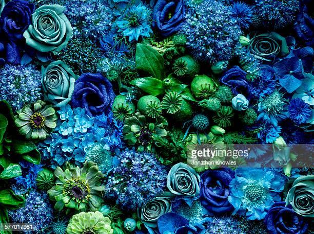 Flower arrangment, full frame