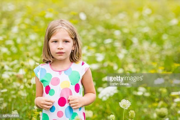 A flower between flowers