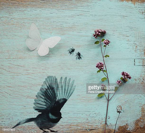 Flower, bird, butterfly and bees on painted wood