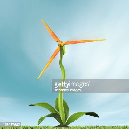 Flower blossom as a wind turbine : Stock Photo
