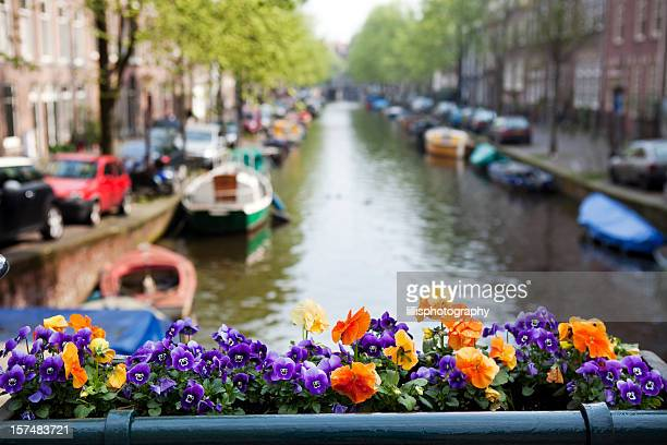Flower Box on Sunny Amsterdam Canal