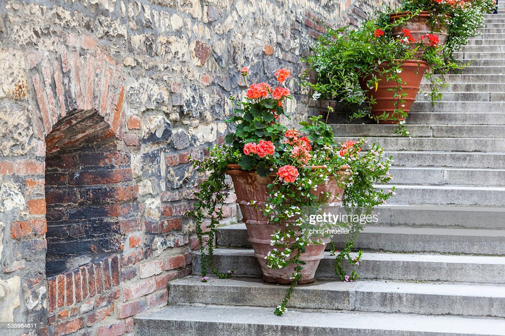 flower decoration at stairs of an old town in Europe : Stock Photo