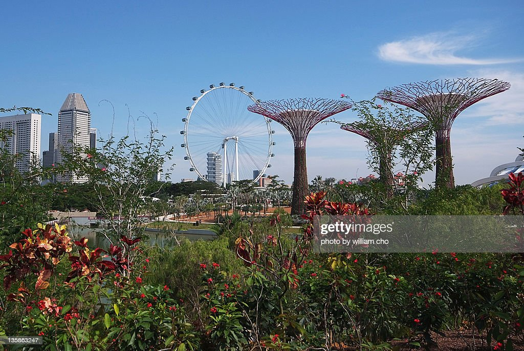 Flower dome at gardens by Bay, Singapore : Stock Photo