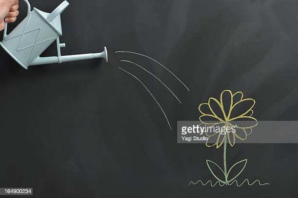 Flower drawn on the blackboard