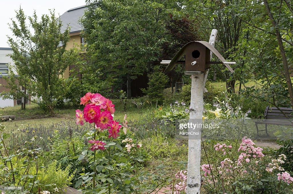Flower garden : Stock Photo