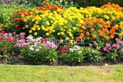 jardins fleuris en tha lande photo thinkstock. Black Bedroom Furniture Sets. Home Design Ideas