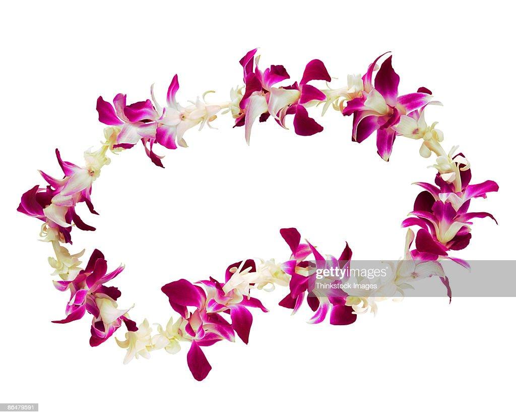 Flower Leis Stock