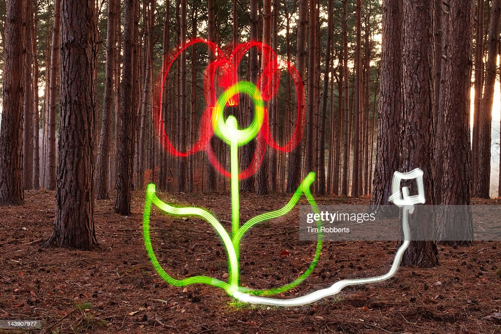Flower made of light plugged into tree.