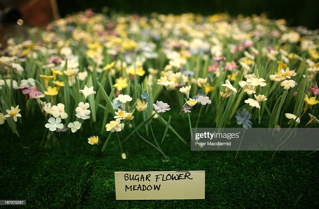A flower meadow made entirely from sugar is shown at the Experimental Food Society Exhibition on November 8, 2013 in London, England. A collective of food magicians, sonic food artists, cake sculptors, gastronomic tailors, culinary cabaret troupes and a dining conceptualist have gathered together for a two day exhibition featuring their unique edible creations.