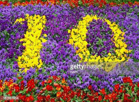 Flower Number Ten