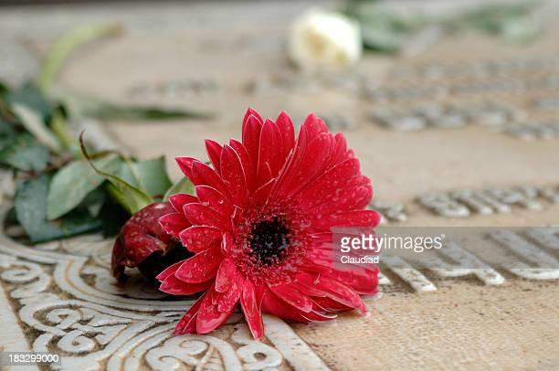 Flor em um acento grave