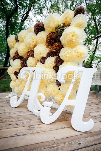 Flower Pompon Backdrop Wall Wedding Decoration Zone With Double ...