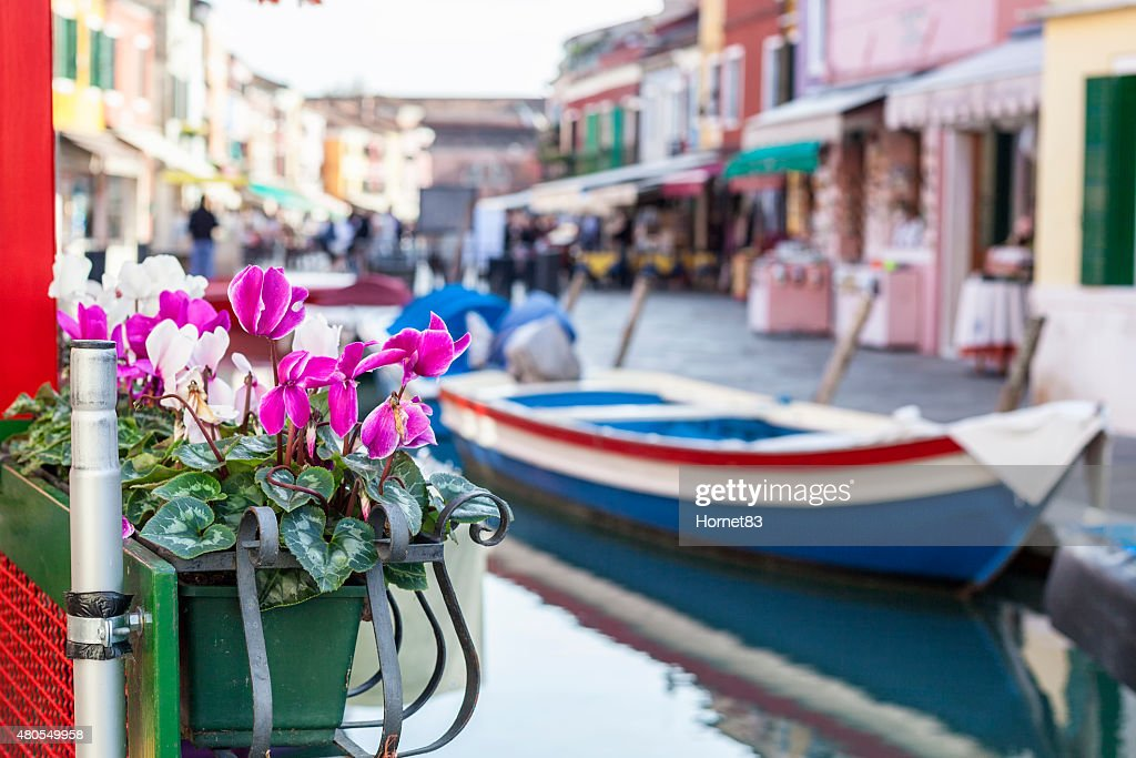 Flower pot in front of a boat : Stock Photo