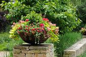 Beautiful flower pot framing house entrance. Calibrachoa, million bells, geranium, sweet potato vine in the planter