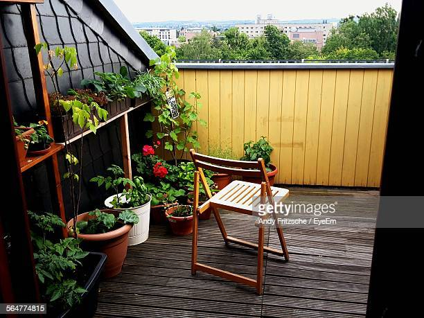 Flower Pots At Balcony Of House