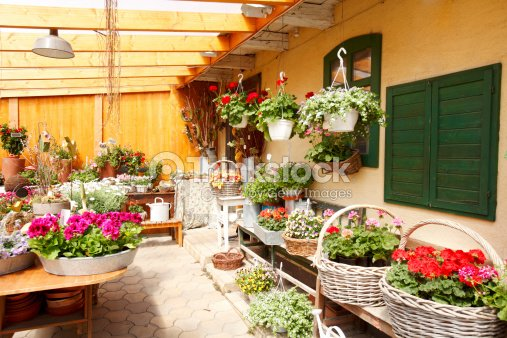 Flower shop interior stock photo thinkstock for Flower shop design layouts