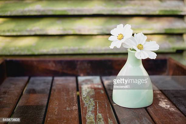 Flower vase with two white blossoms of Cosmea, Cosmos Bipinnatus, on wooden tray
