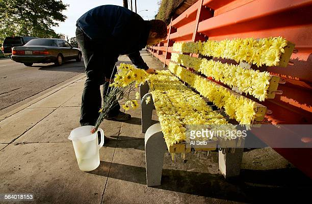 LOS ANGELES CA Flower–adorned park bench artwork located on Glendale Blvd in Echo Park Artist Justin Stadel's Still Life With Reclining Memory is a...
