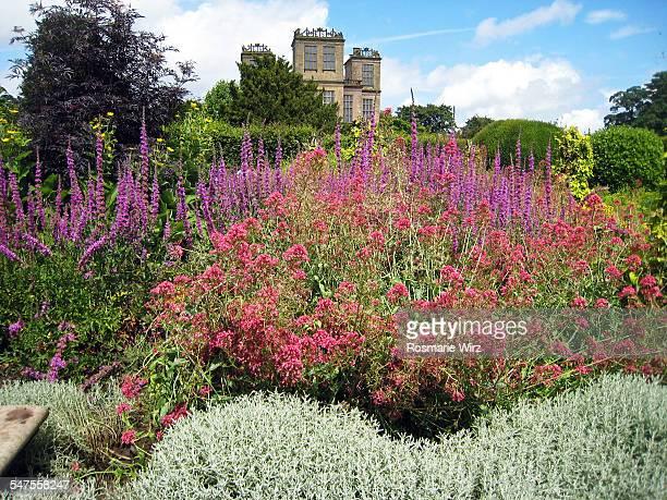 Flowered garden of Hardwick Hall