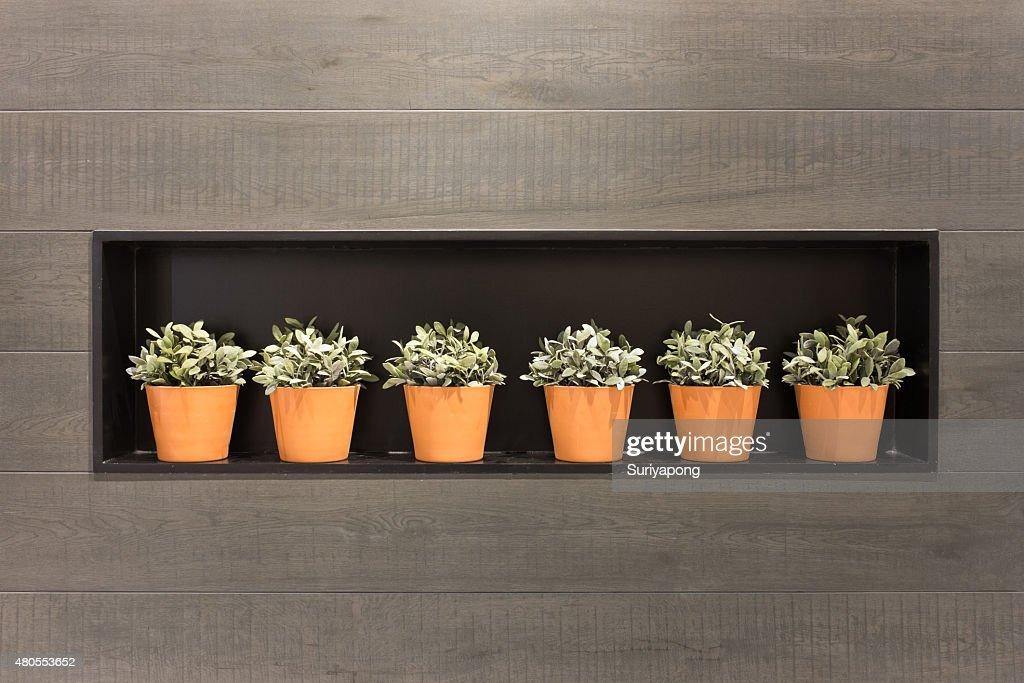 Flowerpot na textura de parede laminado e de fundo. : Foto de stock