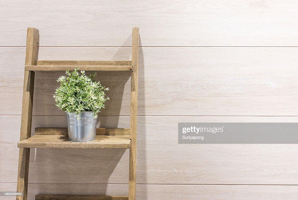 Flowerpot en la Escalera con fondo laminado de madera. : Foto de stock
