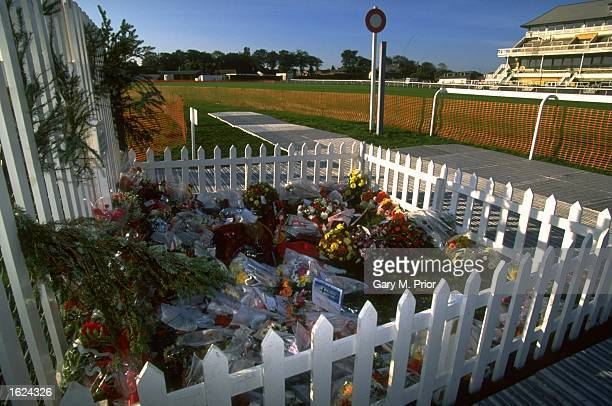 Flowers adorn the grave of Red Rum near the finishing post at the Home of the Grand National at Aintree racecourse in Liverpool England Red Rum won...