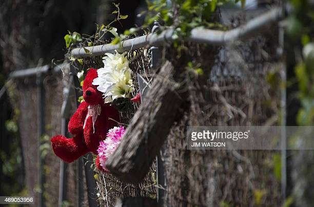 Flowers and a teddy bear are tied to fence of a vacant lot where Walter Scott the 50yearold man who was shot and killed as he ran away from an...