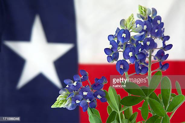 Flowers and Flag