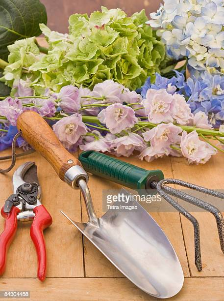 Flowers and gardening supplies