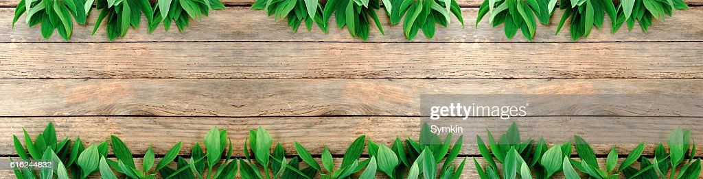 Flowers and leaves on wood texture. View from above. : Stock-Foto