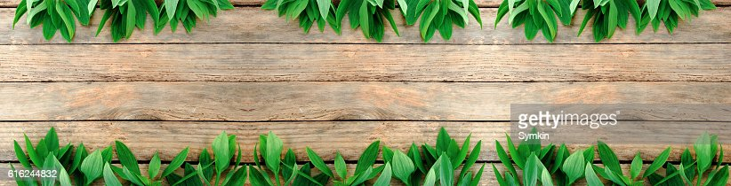 Flowers and leaves on wood texture. View from above. : Foto de stock