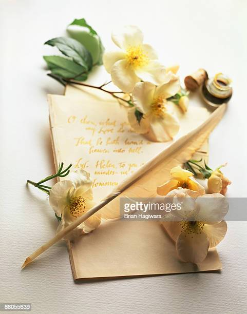 Flowers and quill pen with letter