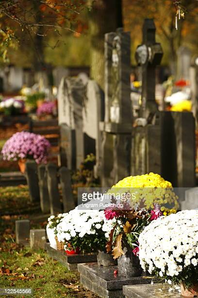 Flowers And Tombstones