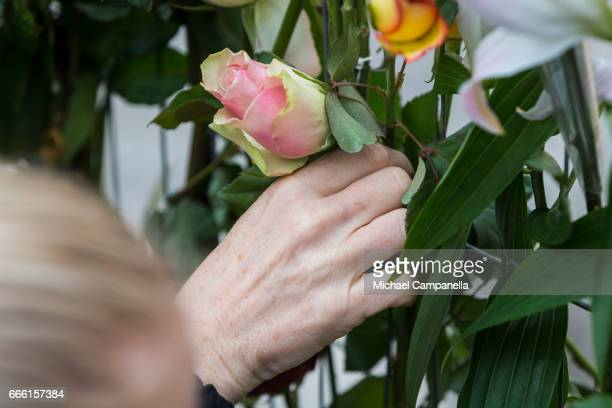 Flowers are placed at the scene of the terrorist truck attack in downtown Stockholm on April 8 2017 in Stockholm Sweden