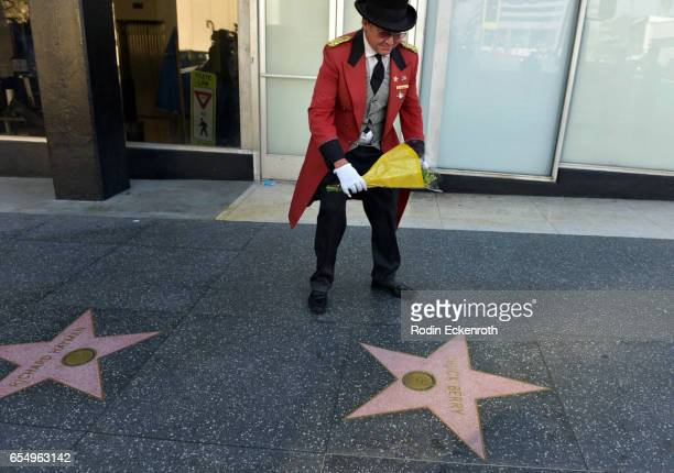 Flowers are placed on Chuck Berry's Hollywood Walk of Fame Star on March 18 2017 in Hollywood California Musician Chuck Berry passed away March 18...