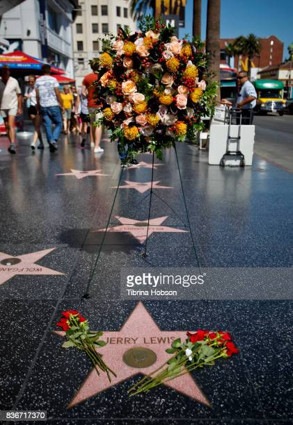 Flowers are placed on the Hollywood Walk of Fame Star in memory of Jerry Lewis on August 21 2017 in Hollywood California