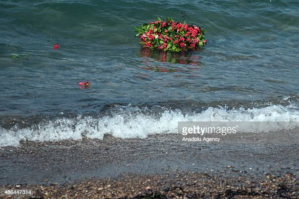 Flowers are seen in the sea as people commemorate Aylan Kurdi the threeyearold boy dressed in shorts and a red Tshirt and 12 Syrians who drowned in...