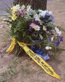 MURDER 1 / 08/14/02 Flowers are tied to a tree with police crime scene tape on Teesdale Place where a man was stabbed to death Tuesday night JIM...