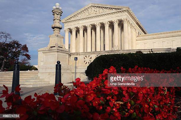 Flowers bloom in front of The United States Supreme Court building November 6 2015 in Washington DC The court announced Friday that it will hear...