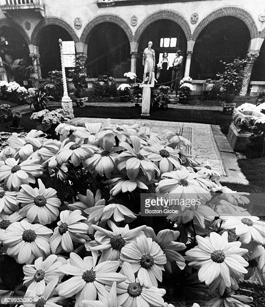 Flowers bloom in the courtyard at the Isabella Stewart Gardner Museum in Boston on April 6 1979