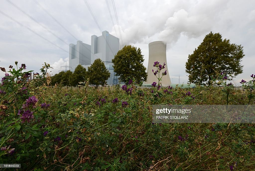 Flowers blossom outside the premisses of the new Neurath lignit coal-fired RWE power station on September 11, 2012 at Grevenbroich near Aachen, western Germany. RWE, one of Germany's major energy provider, invested in new coal conducted power plants.