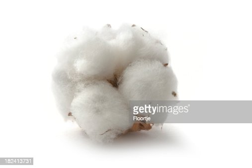 Flowers: Cotton