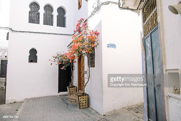 Flowers grow on an old building in Tangier, Morocco