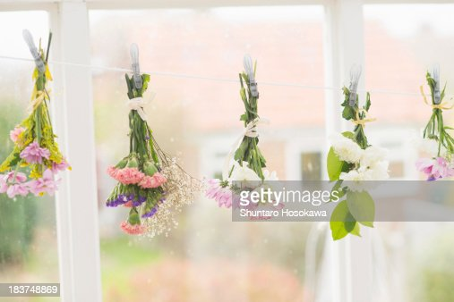 Flowers hung upside down on clothes line : Stock Photo