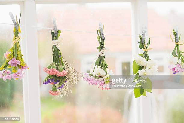 Flowers hung upside down on clothes line