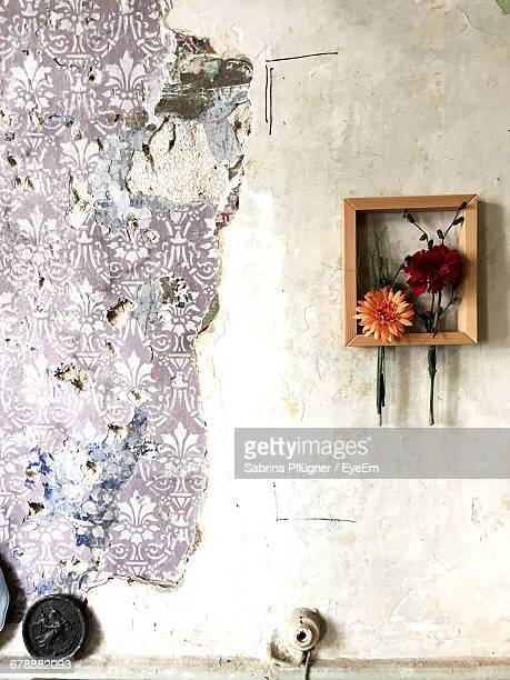 Flowers In Frame On Damaged Wall