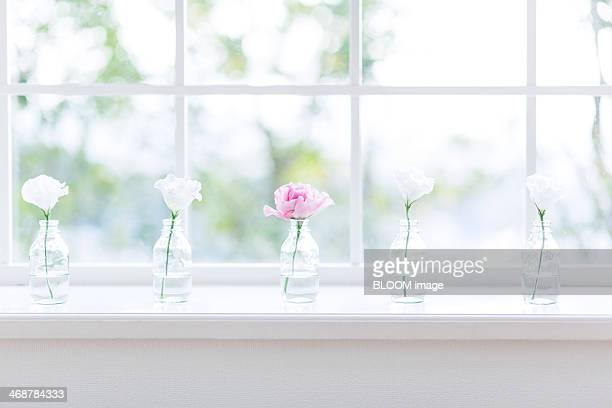 Flowers in glass vases on windowsill
