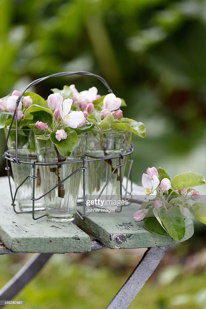 Flowers in glasses