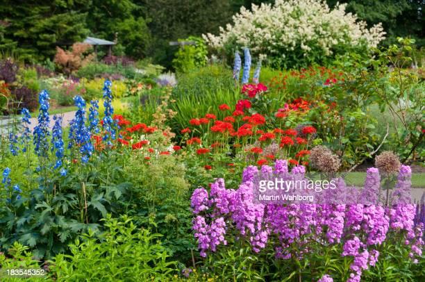 Flowers in Ornamental garden